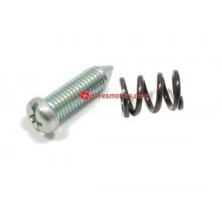 Idle Screw / Spring for Walbro WA / WT Series Carburetors